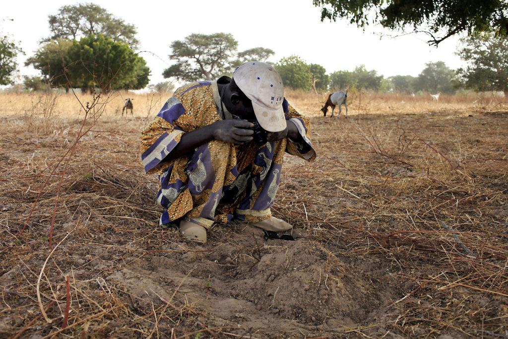 Terres de savoirs / Photo-ethnographie participative au Sénégal
