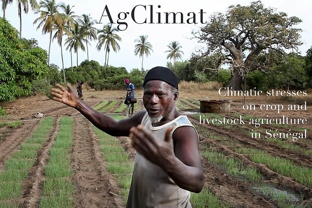 AgClimat / Climatic stresses on crop and livestock agriculture in Sénégal